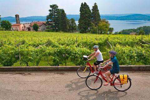 Cyclists in a vineyard near Lake Viverone