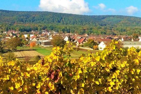 Landschaft Bergholtz